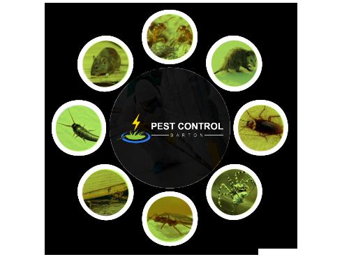 Pest Control Barton