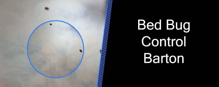 Bed Bug Control Barton